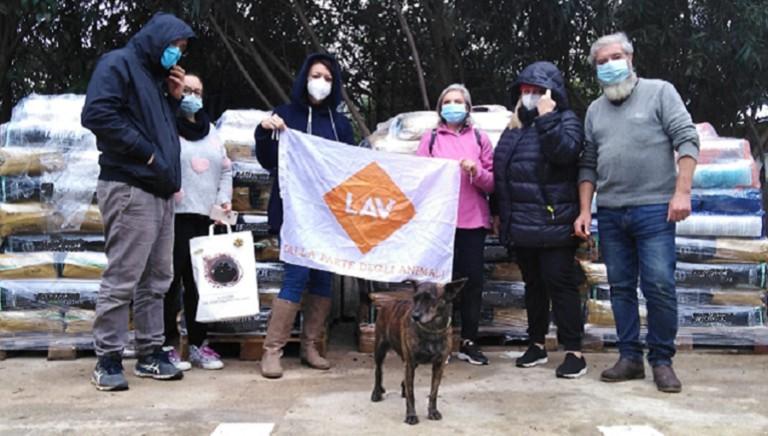 Il nostro dono, in aiuto dei cani e gatti di Palermo e provincia e di Lampedusa