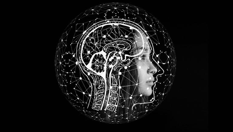 Mini cervelli con tecniche in vitro, ma Italia ancorata a test animali