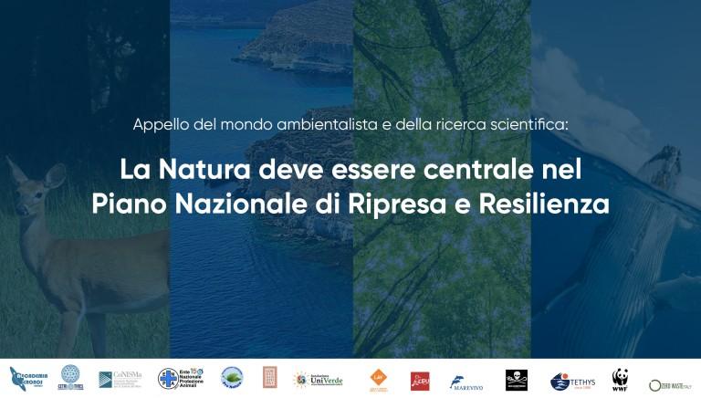 Piano Nazionale di Ripresa e Resilienza: la Natura sia protagonista!