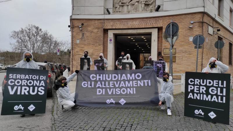 LAV e Essere Animali davanti la sede del Ministro della Salute (Roma)