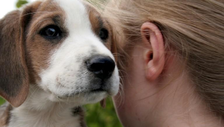 Rapporto Eurispes 2021: aumenta chi accoglie animali in famiglia