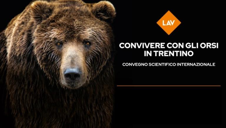 """Pubblicati i video del nostro convegno """"Convivere con gli orsi in Trentino"""""""