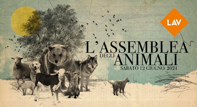 """""""L'ASSEMBLEA DEGLI ANIMALI"""". 12-13 giugno 2021 Congresso Nazionale LAV"""