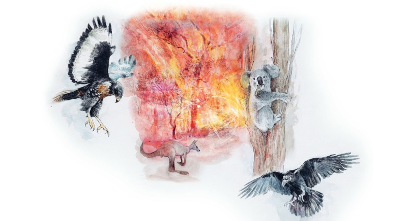 L'Assemblea degli animali: Gianluca Felicetti intervista Filelfo