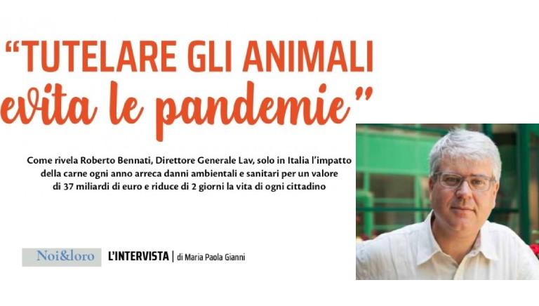 Tutelare gli animali evita le pandemie: QZ in edicola