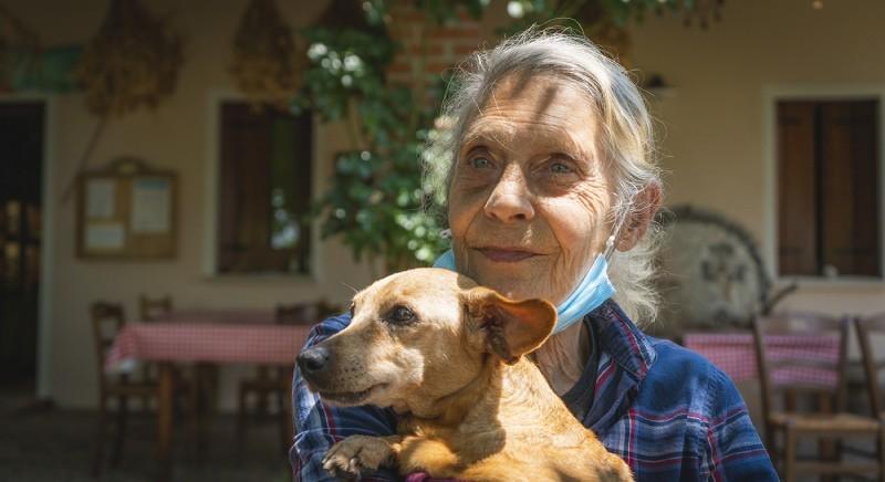 Vittoria LAV, salvi migliaia di cani e gatti: TAR respinge ricorso industrie farmaceutiche
