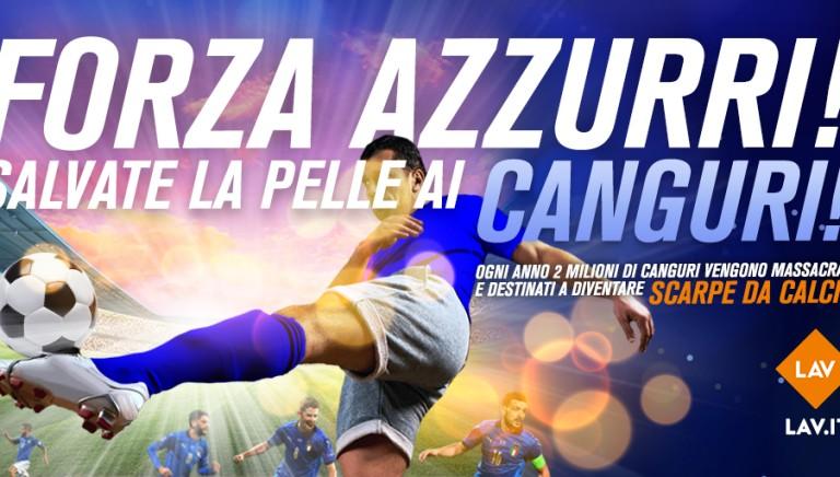 EURO2020: UEFA SALVI I CANGURI!