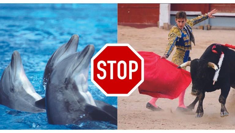 Turismo, LAV e Ram: Codice etico per viaggi rispettosi degli animali