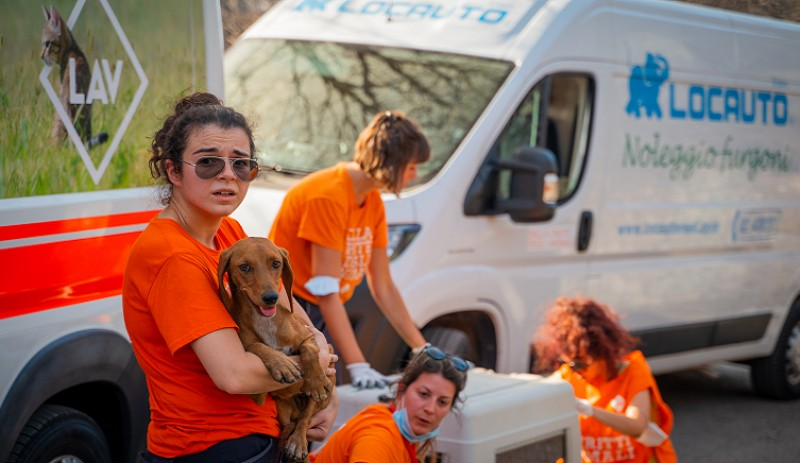 LAV in the front line to help animals in Sardinia fire emergency