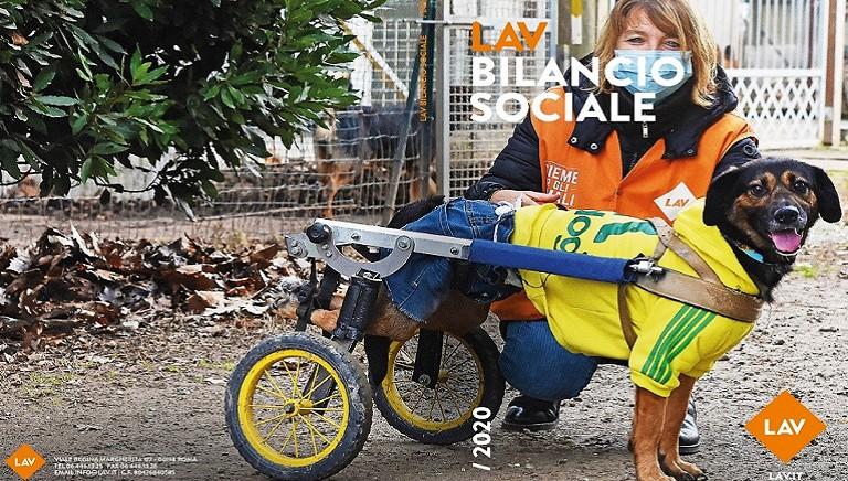 Pubblicato il Bilancio Sociale 2020: LAV tra le associazioni piu' virtuose in Italia!