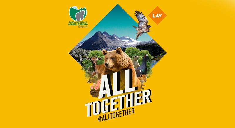 Orsi: progetto 'Bear Ambassador' LAV-Parco Adamello Brenta
