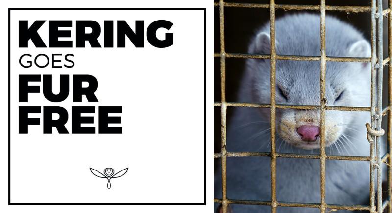 """Pellicce, annuncio gruppo Kering: sara' Fur-free dal 2022. """"Il Mondo e' cambiato!"""""""
