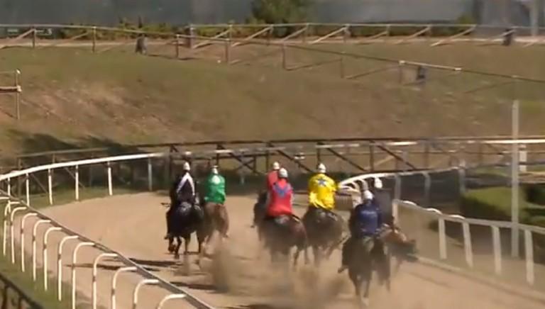 Palio di Fucecchio (Fi), due cavalli morti nelle prove: fermare la manifestazione!