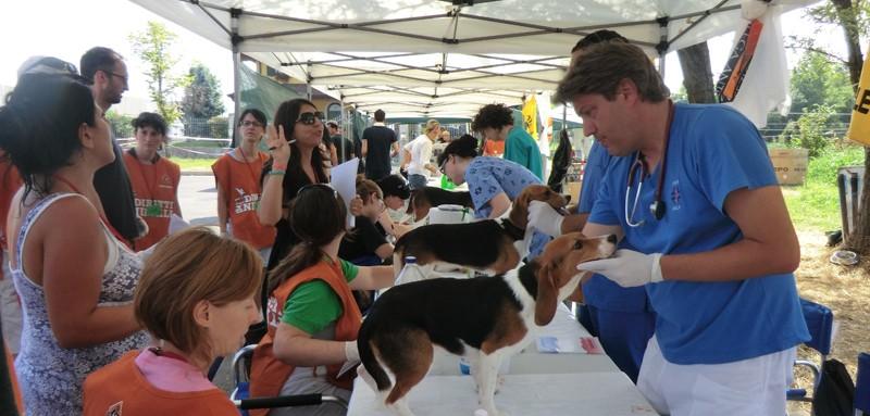Le prime visite fuori da Green Hill per i 2.639 beagle