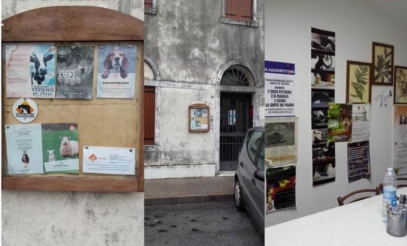 Sede Territoriale LAV Onlus di Bassano del Grappa