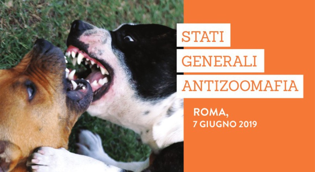 Stati Generali dell'Antizoomafia