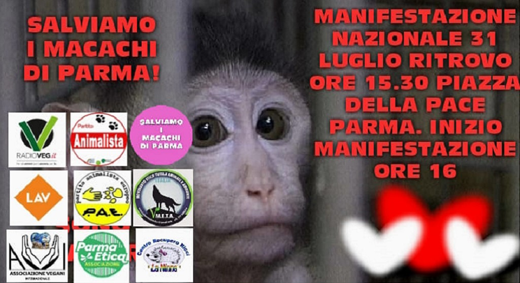 "Manifestazione ""Salviamo i macachi di Parma"""