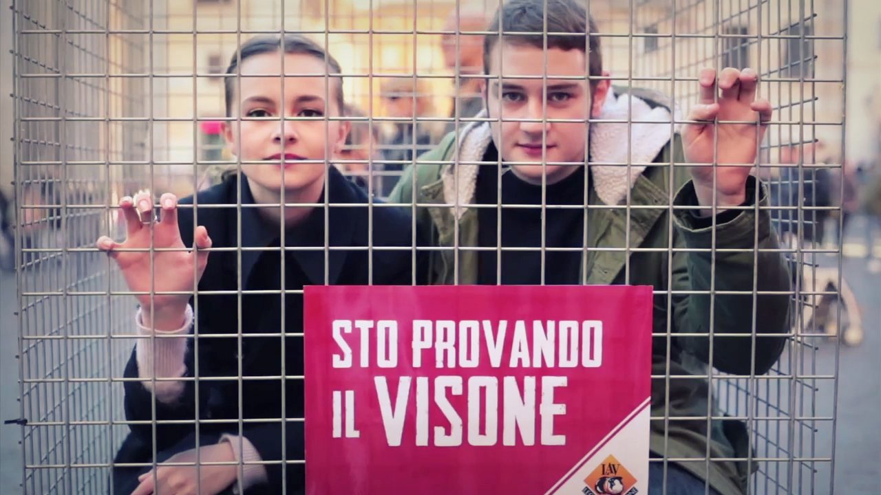 LAV - Vieni in piazza per dire No alle pellicce