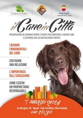 il Cane in Città