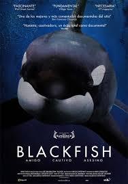 26, 27, 28 maggio 2014 BLACKFISH nelle sale del circuito The Space Cinema