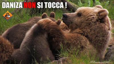 """Presidio """"Daniza non si toccA"""""""