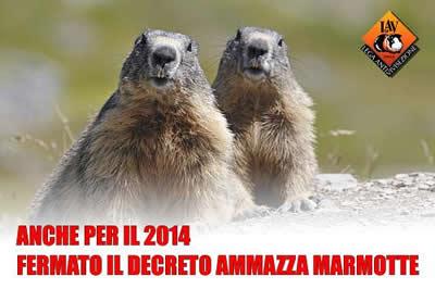 Il TAR sospende il decreto ammazza marmotte