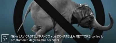 sit-in LAV CASTELFRANCO con DONATELLA RETTORE contro lo sfruttamento degli animali nei circhi