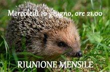 RIUNIONE MENSILE GIUGNO