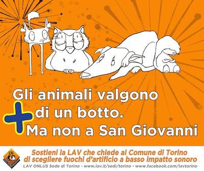 """""""Gli animali valgono + di un botto"""". Ma non a San Giovanni"""