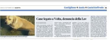 CANE LEGATO NEL CANALE