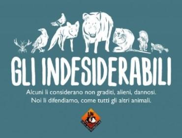 """Arriva a Firenze la mostra Lav """"GLI INDESIDERABILI""""   PROROGATA AL 15 OTTOBRE"""