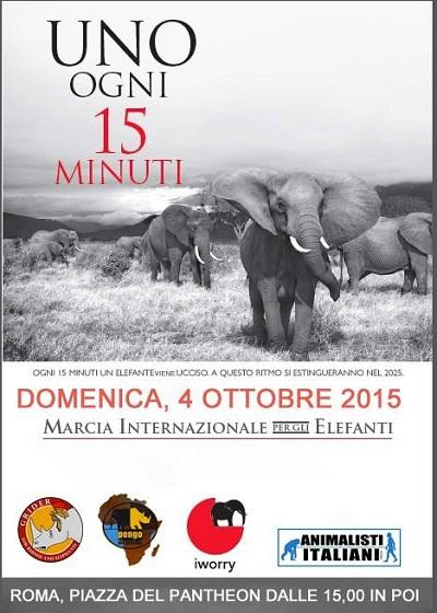 Insieme a GRIDER in piazza del Pantheon il 4 ottobre alle 15 per dire STOP al commercio d'avorio!