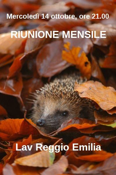RIUNIONE MENSILE OTTOBRE