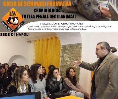 CRIMINOLOGIA & TUTELA PENALE DEGLI ANIMALI
