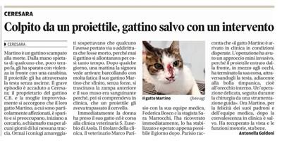 GATTO MARTINO FERITO DA UN PROIETTILE