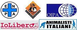 PRESENTATO OGGI  IL PROGRAMMA ANIMALISTA PER IL CAMPIDOGLIO DA LAV, ENPA, AI, AVCPP e OIPA