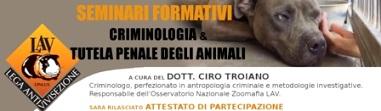 """SEMINARIO FORMATIVO  """"Criminologia e tutela penale degli animali"""". a cura di Ciro Troiano, Responsabile dell'Osservatorio Nazionale Zoomafia della Lav"""