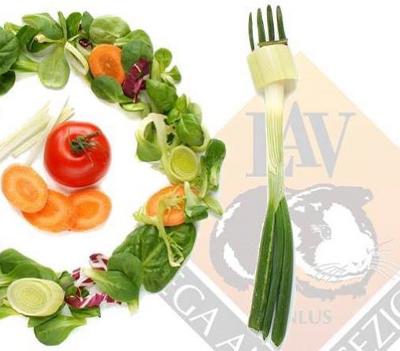 Nutrizione vegan con la dott.sa F. Viparelli