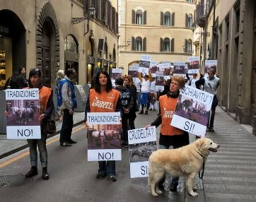 LAV  ancora in piazza a Firenze contro l'uso dei cavalli per le carrozzelle turistiche
