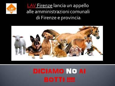Lav Firenze lancia un appello contro l'uso dei botti.
