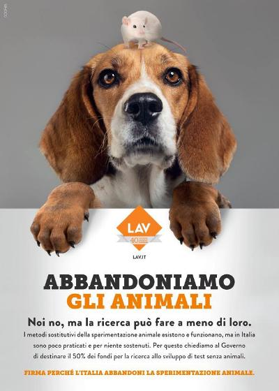 """Banchetto Giornate Nazionali """"Ricerca con #ZEROANIMALI"""""""