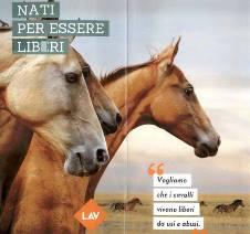 Campagna sensibilizzazione per i cavalli