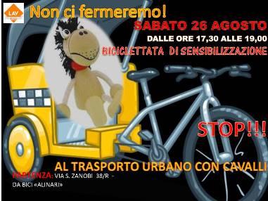 Non ci fermeremo! NO all'uso dei cavalli per il trasporto turistico urbano