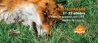 Giornate nazionali stop caccia