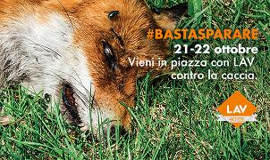 """""""Aboliamo la Caccia!"""": vieni a firmare ai nostri tavoli a Roma il 21 e 22 ottobre. #BastaSparare"""