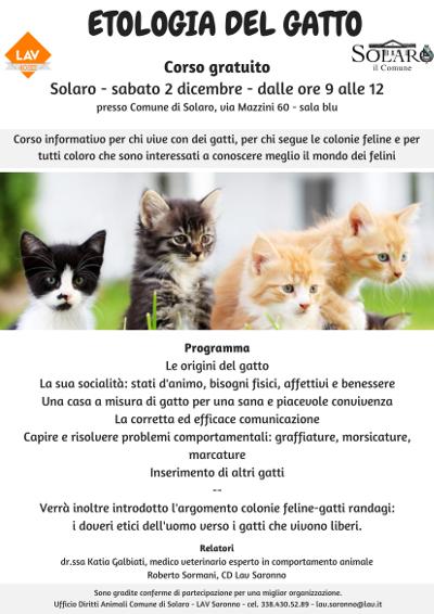 Etologia del gatto
