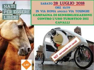 CAMPAGNA DI SENSIBILIZZAZIONE  per dire NO alle carrozzelle turistiche trainate da cavalli!