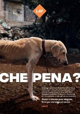 CHE PENA? #chimaltrattapaga