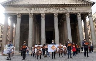 Flash mob al Pantheon per salvare i macachi del progetto Lightup