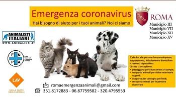 Emergenza coronavirus: il Comune dorme, noi no. LAV Roma e associazioni partner pienamente attive in quattro municipi della capitale.